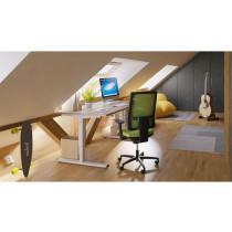 Thuiswerkplek met elektrisch bureau Flex-Eco-sfeer